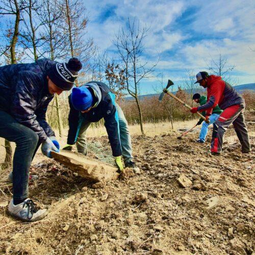 Budování Trailů