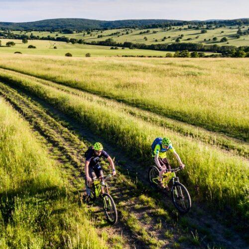 Vojšické Louky Trail Of Life
